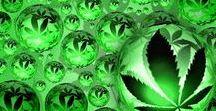 Weed's tutorial / Tutoriales en relación con Cannabis