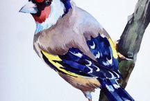 natürmort-kuşlar
