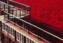 Reddish / Red, czerwono mi, rouge