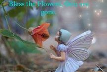 Fairies and Gnomes / Fairies and Gnomes in the Garden