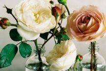 centerpieces and tablescapes / by Kimberly Hansen