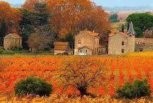 autumn / by Kimberly Hansen