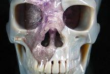 skull crush / look inside my Skull