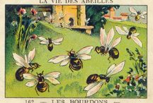 bees / by Kimberly Hansen