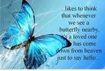 Butterfly Kisses / by Jan Hood
