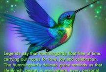Birds- Hummingbirds / by Jan Hood