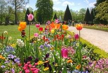 A day in the garden heals the weary mind. / A day in the garden heals the weary mind.