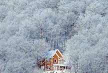 { winter and seasons greetings }