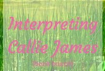 ~Interpreting Callie James {Storyboard}~ / My early-1900s historical romance. Set aside for a time.