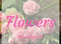 """~Flowers {Storyboard}~ / Mood board for my short story sequel to """"The Lady of the Vineyard."""""""