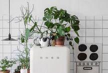 ::we love plants::