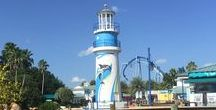 SeaWorld Orlando / All about SeaWorld Orlando!