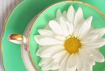 tea time / by Assunta Caruso