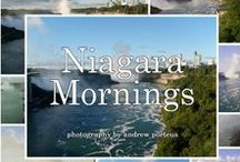Niagara Falls Fiction / Novels about Niagara Falls or by Niagara Falls authors.