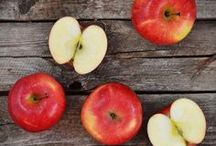 Fall Foods / The recipes we love to savor when autumn hits.  / by Fox News Magazine