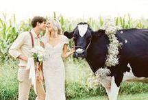 Western Weddings / This board is dedicated to Western inspired wedding ideas!