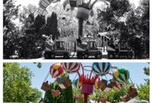 Transformation Tuesday / We are always keeping busy around the park making it better for you and your family.