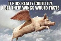 if pigs could fly their wings would be delicious
