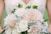 Wedding Bouquets - White