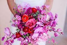 Wedding Bouquets - Fuchsia