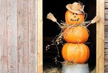 Fall Inspiration / Inspiring ideas for decorating for Fall!  Fall Decorations, Pumpkins, Recipes, Beautiful Fall Porches and so much more!