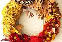 autumn  / by Salem