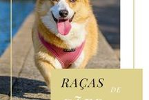 Raças De Cães / Tudo sobre cachorros.