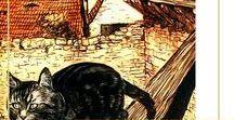 Ilustrações do gato / Ilustrações com gatos, engraçados e divertidos.