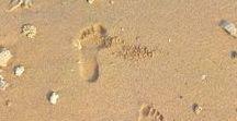 Sri Lanka / Sri Lanka, Sigiriya, kandy, Ella, Montagne, Train, Plage, beach, Mirissa