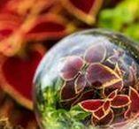 Lensball / Lensball photo pics