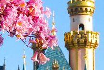 Disney Planning
