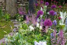 Garden Love / by The Shannon Jones Team