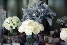 flowers / by Kristen
