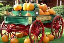 Carts & Wagons