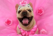 pretty in pink!!!