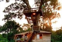 Treehouse Love / by Sharesse Ann