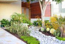 Landscape ☆ Rain Garden / Rain garden inspiration and mechanics.  / by Jenaria's Realm