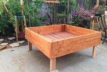 Garden ☆ Raised Beds / by Jenaria's Realm
