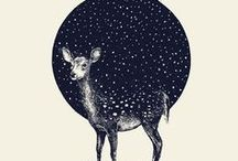 Illustrations / by Naniii