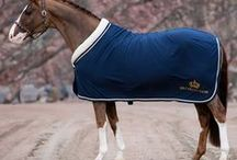 Horse equipment / Smart equipment and solutions for horses and horseowner