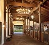 Stable inspiration / Inspiration and design idea's for stables and pastures
