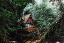 Cabins in the wild / Absolutely stunning cabins and cottages located in the forest or by the sea