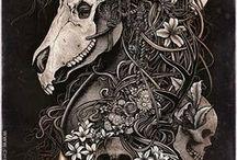 Arts découverte: Skull / Arts découverte: Skull, La découverte de talents en Arts dans le domaine des ouvres présentent des ossements ou des cranes d'humain ou d'animaux.