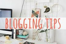 Blogging Tips / Blogging tips and advice for travel bloggers, and other bloggers and site owners. How to start a travel blog, how to grow your audience, how to monetize your travel blog, how to leverage social media, how to get paid to travel, and more.