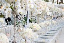 White Wedding / white weddings
