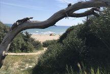Landscapes - Italy - sun - sea - Puglia / Scatti di giornata, il bello del nostro paese❤️