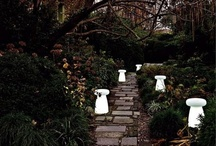 Landscape Lighting / by Timothy Thibault