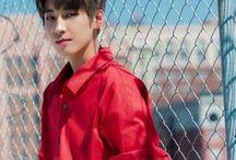 Wonwoo | SVT