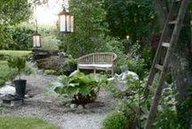 Backyard | Garden / by Jen Anderson