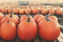 Halloween/Fall Holidays / by S Starkey